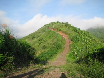grassy-hill